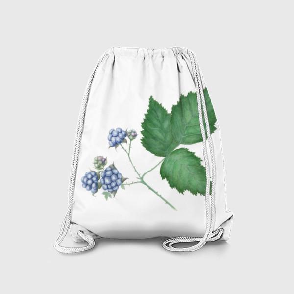 Рюкзак «Ежевика Blackberry»