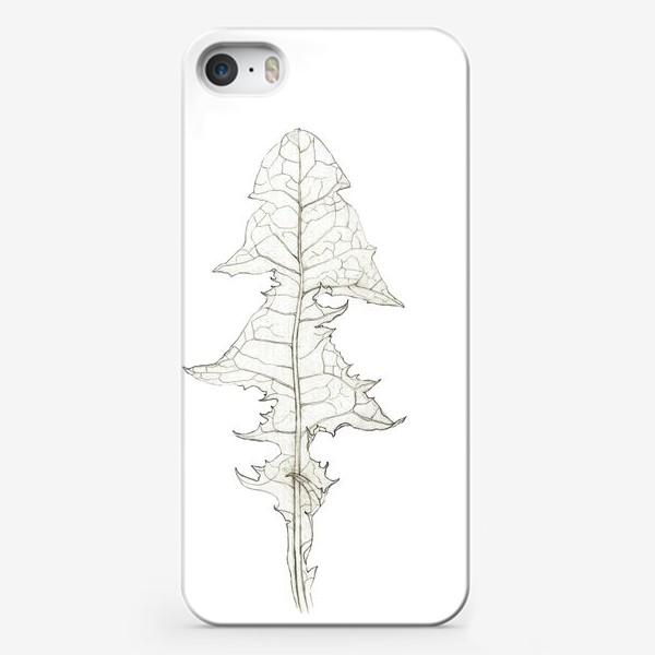 Чехол iPhone «Лист одуванчика Dandelion Leaf»