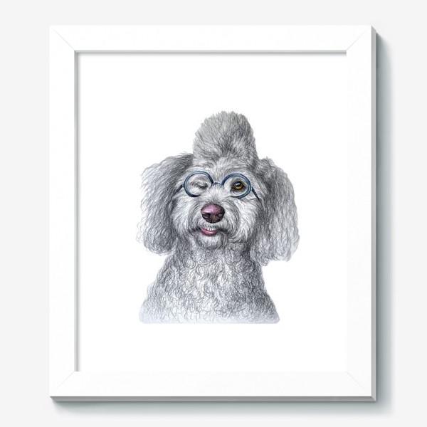Картина «Собака в очках»