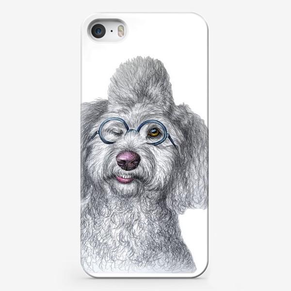 Чехол iPhone «Собака в очках»