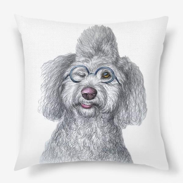Подушка «Собака в очках»