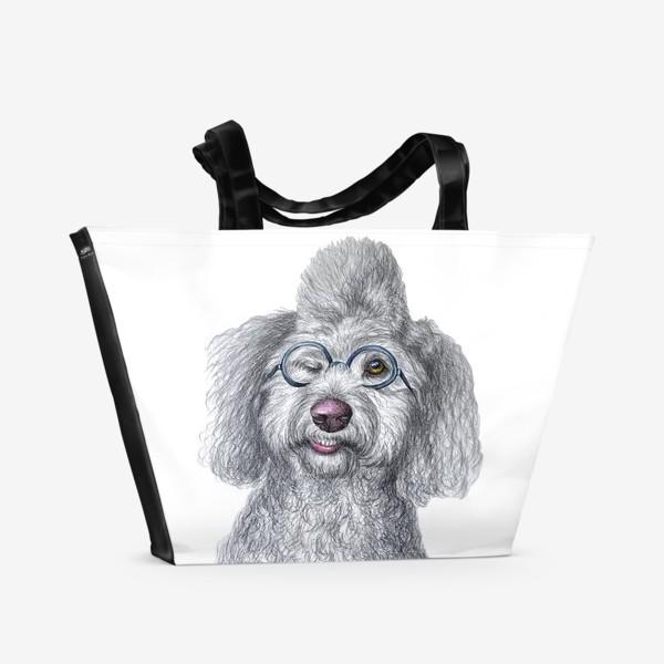 Пляжная сумка «Собака в очках»