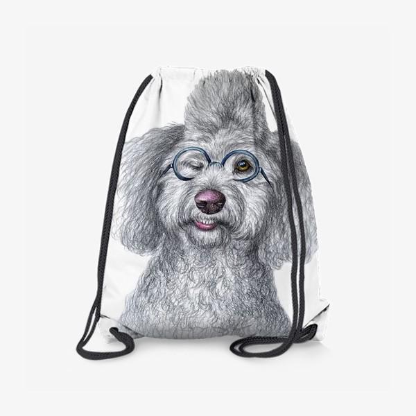 Рюкзак «Собака в очках»