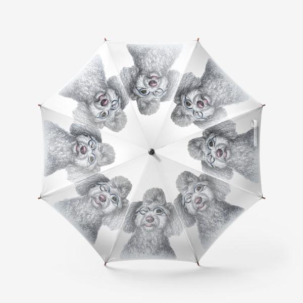 Зонт «Собака в очках»