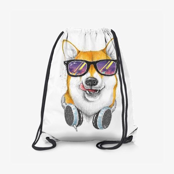 Рюкзак «Сиба ину в очках»