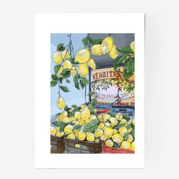 Постер «Итальянские лимоны(цвет)»