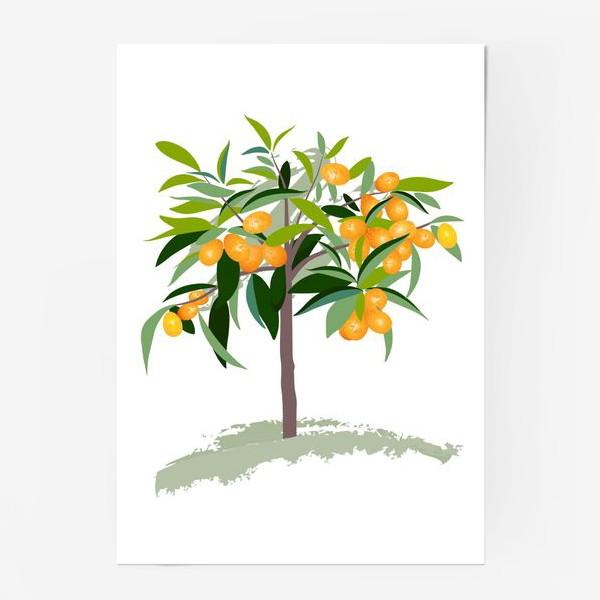 Постер «Кумкват»