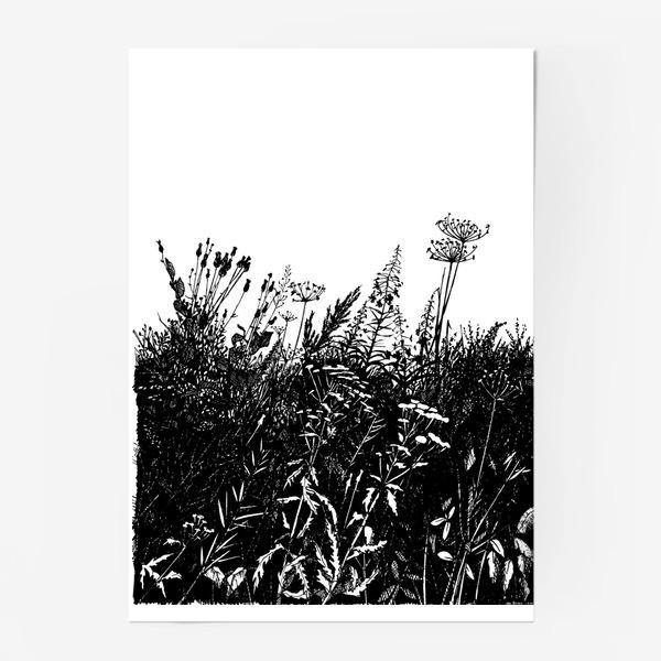 Постер «Разнотравье»