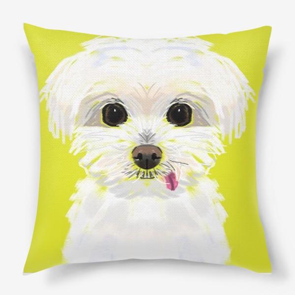 Подушка «Белая собачка мальтийская болонка»