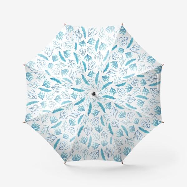 Зонт «Сине-зеленые водоросли»