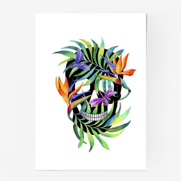 Постер «Череп с растениями»