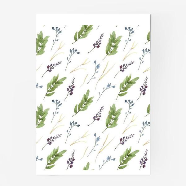 Постер «Акварельные полевые цветы»