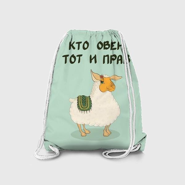 Рюкзак «Кто овен, тот и прав»