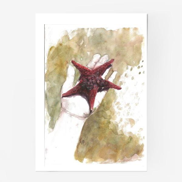 Постер «Морская звезда»