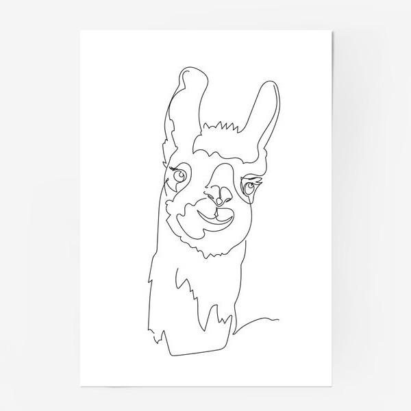 Постер «Забавная альпака/Лама. Графика. Линейный рисунок»