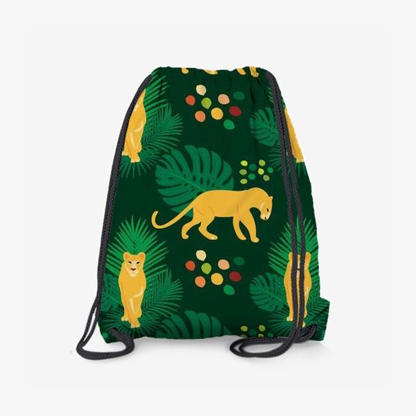 Рюкзак «Львы»