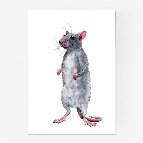 Постер «Крыса 2. Символ 2020 года »