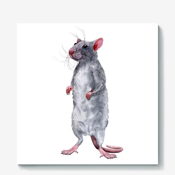 Холст «Крыса 2. Символ 2020 года »