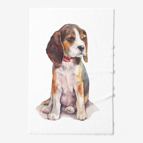 Полотенце «собака бигль»