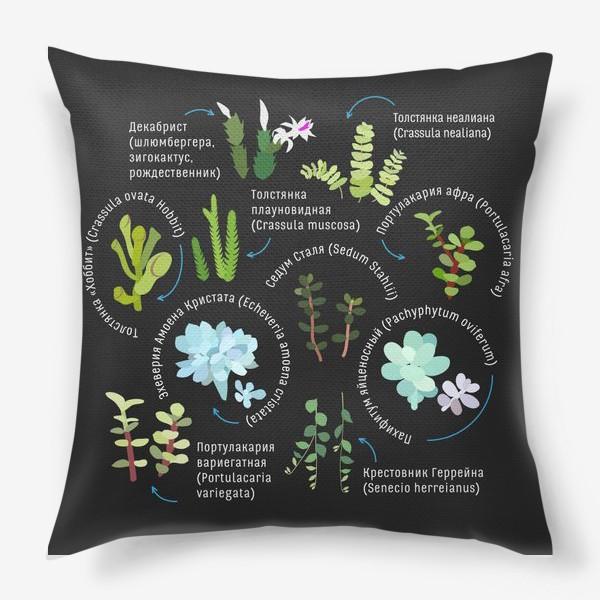 Подушка «суккуленты. Домашние растения.»