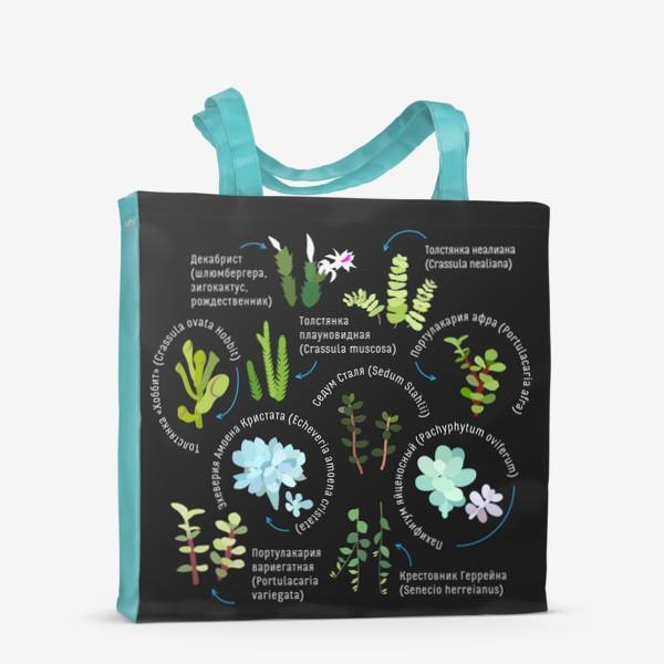Сумка-шоппер «суккуленты. Домашние растения.»