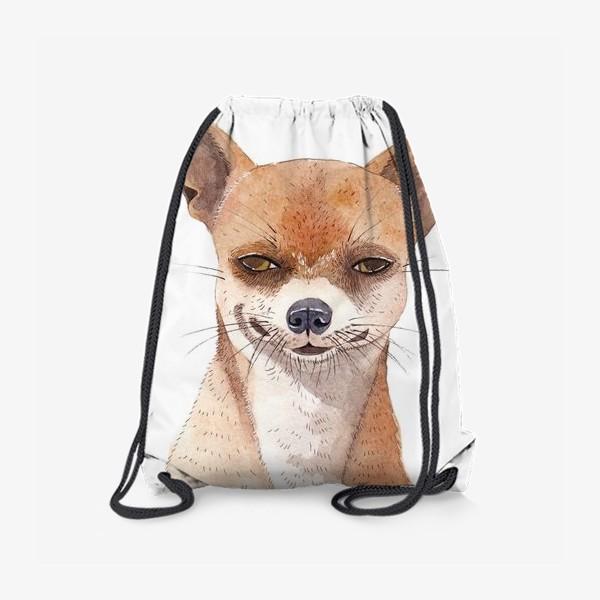 Рюкзак «Чи-хуа-хуа»
