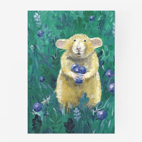 Постер «пухленькая крысонька»