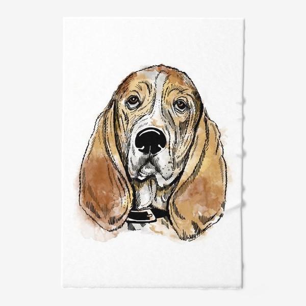 Полотенце «Собака бассет хаунд»