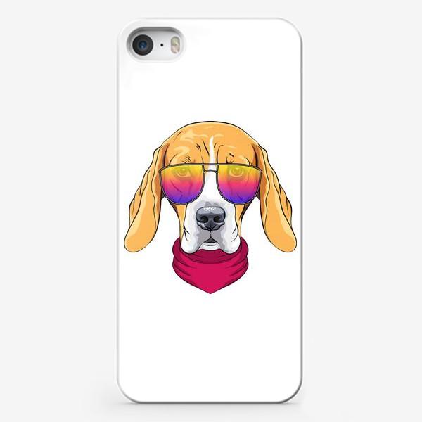 Чехол iPhone «бигль в очках»
