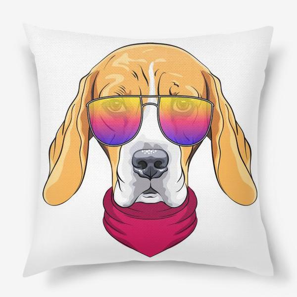 Подушка «бигль в очках»