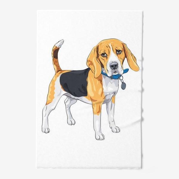Полотенце «собака породы бигль»