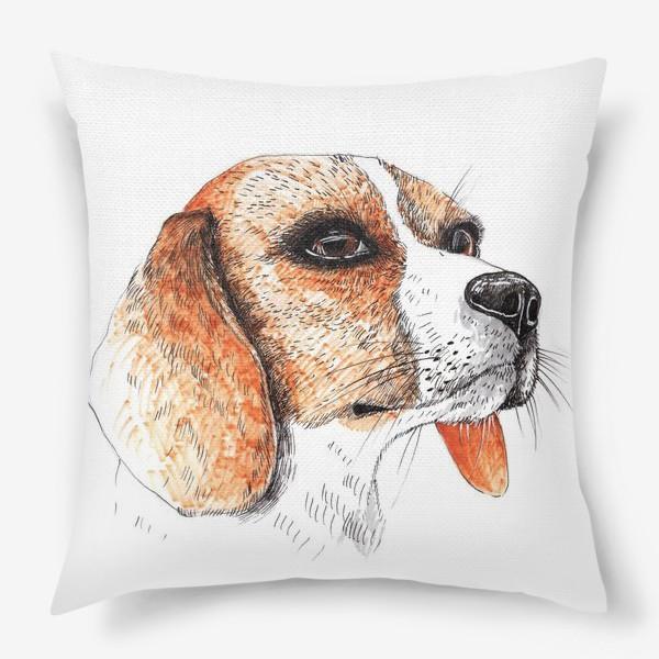 Подушка «Собака Бигль Рисунок»