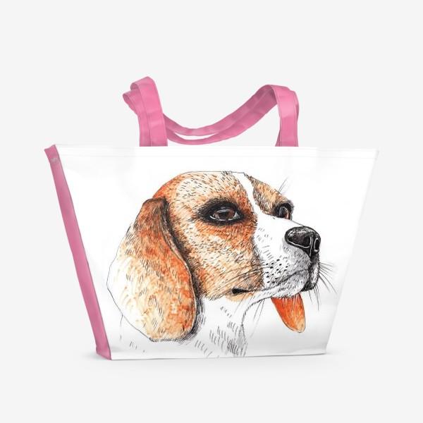 Пляжная сумка «Собака Бигль Рисунок»