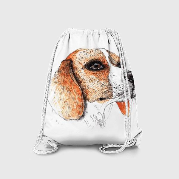 Рюкзак «Собака Бигль Рисунок»