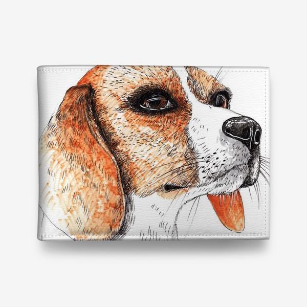 Кошелек «Собака Бигль Рисунок»