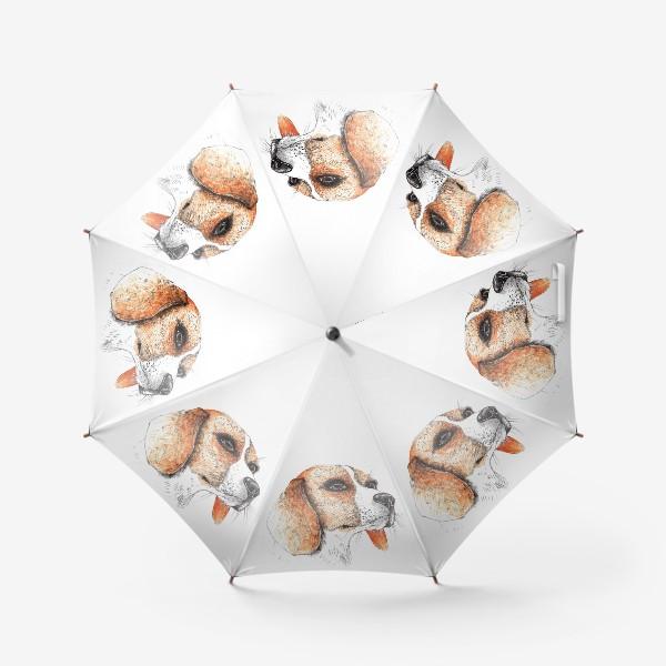 Зонт «Собака Бигль Рисунок»