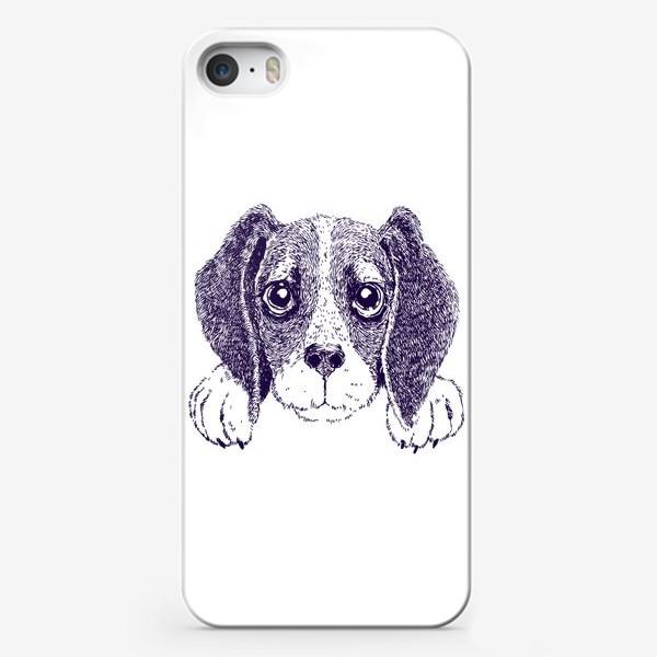Чехол iPhone «Бигль»