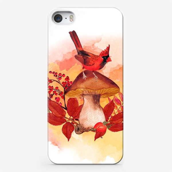 Чехол iPhone «кардинал птица»
