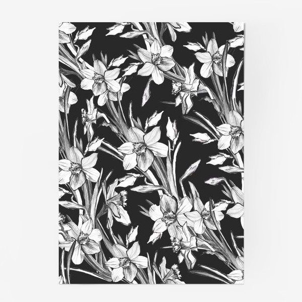 Постер «Нарциссы черно-белые, карандашная графика»