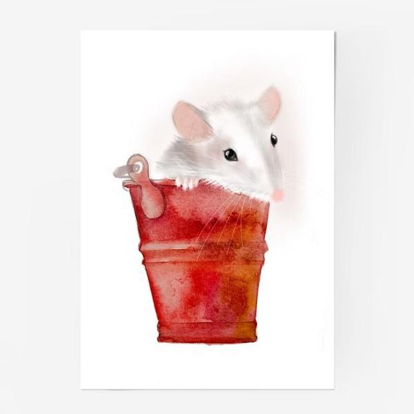 Постер «Мышка в ведерке»