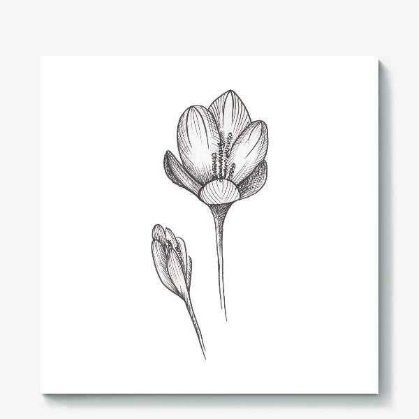Холст «Скетч цветок2»