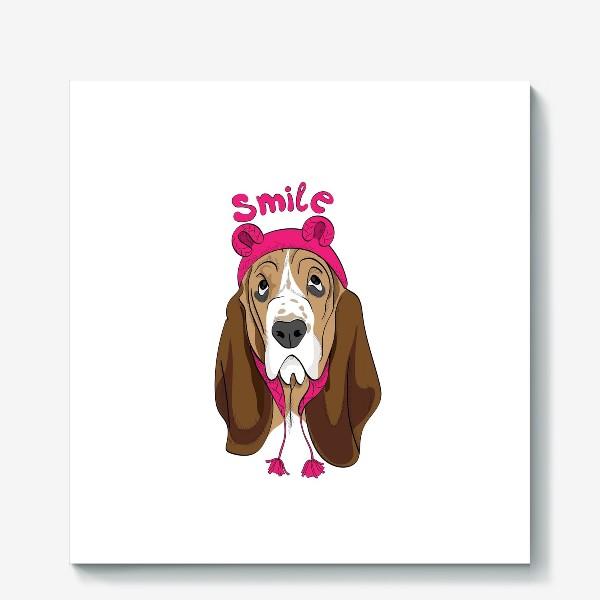 Холст «Собака в смешной шапочке»