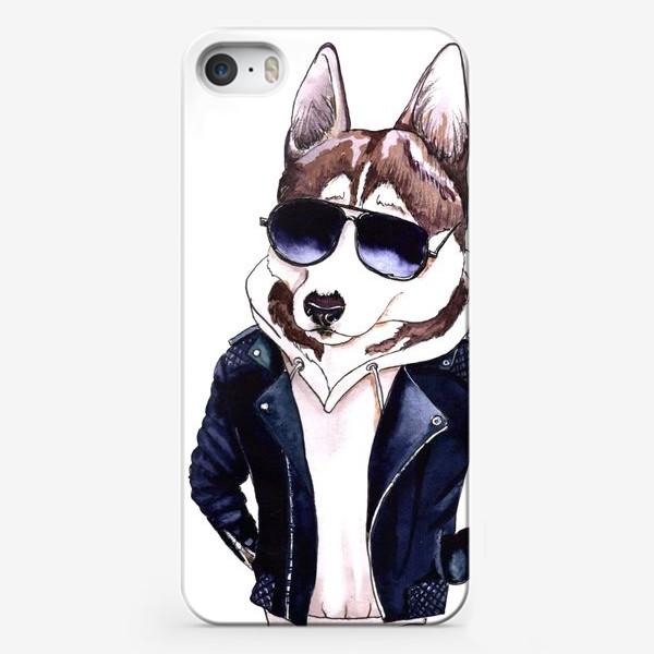 Чехол iPhone «Мистер Хаски»