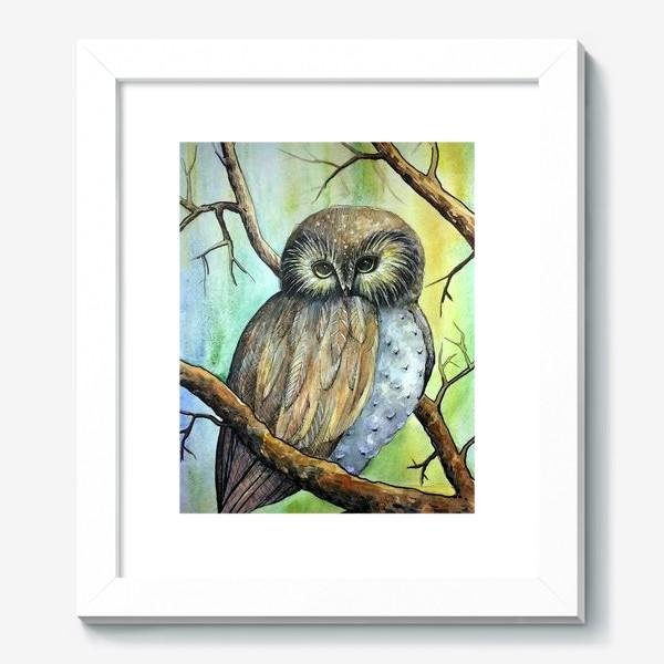 Картина «Сова в лесу»