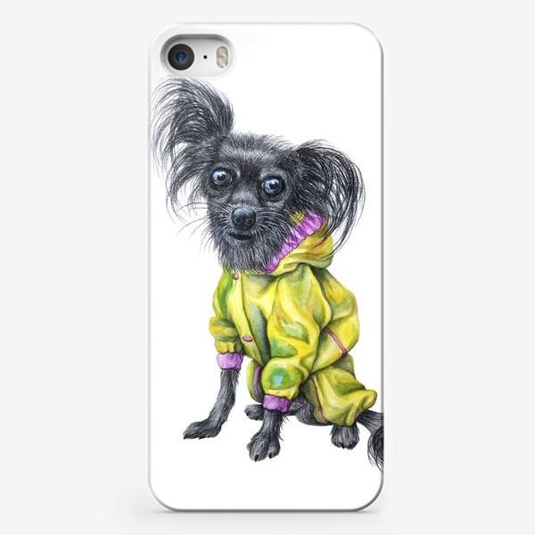 Чехол iPhone «Чихуахуа в одежде»