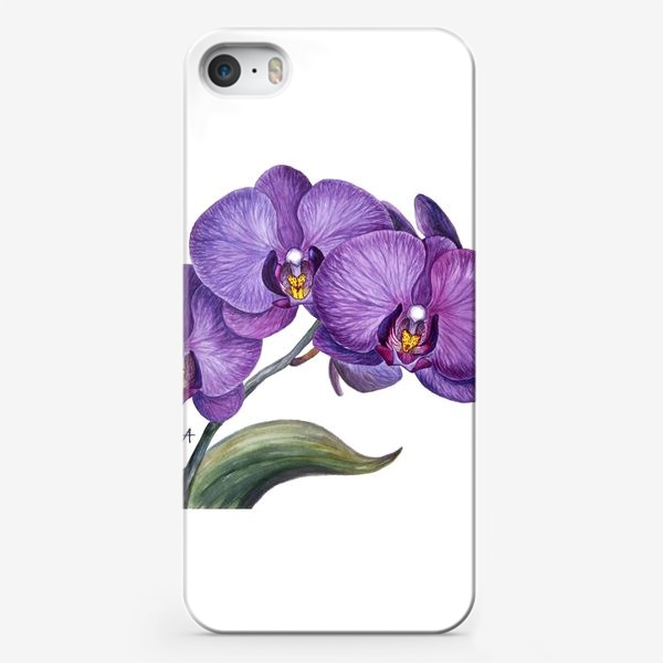 Чехол iPhone «Ветка орхидеи»