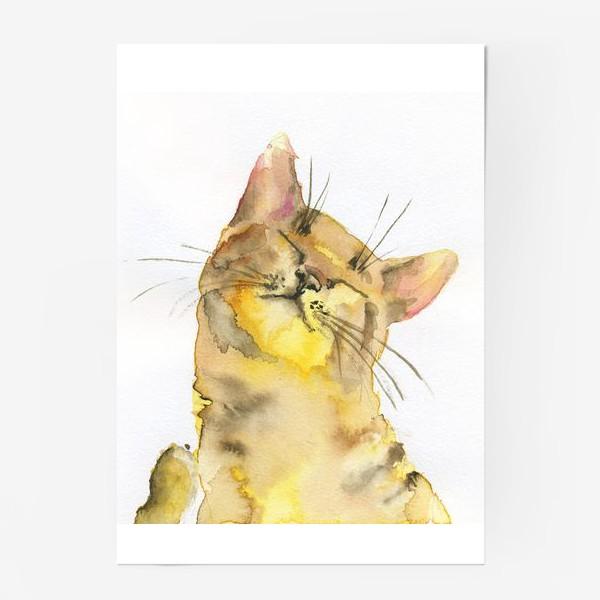 Постер «Рыжий кот проснулся»