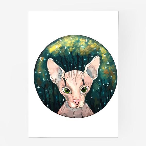 Постер «Кот сфинкс  в лесу»