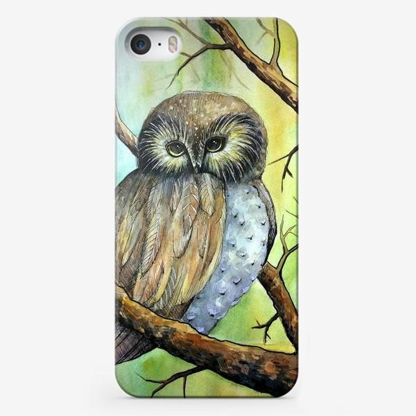 Чехол iPhone «Сова в лесу»