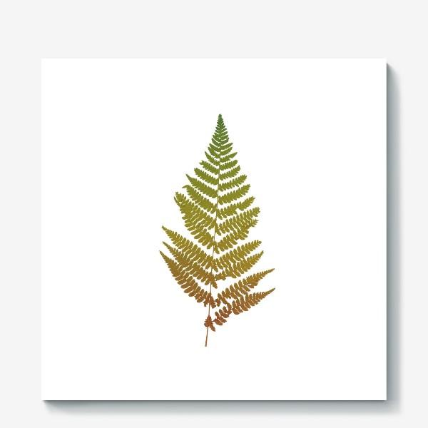 Холст «Растение папоротник, природа, гербарий, лес»